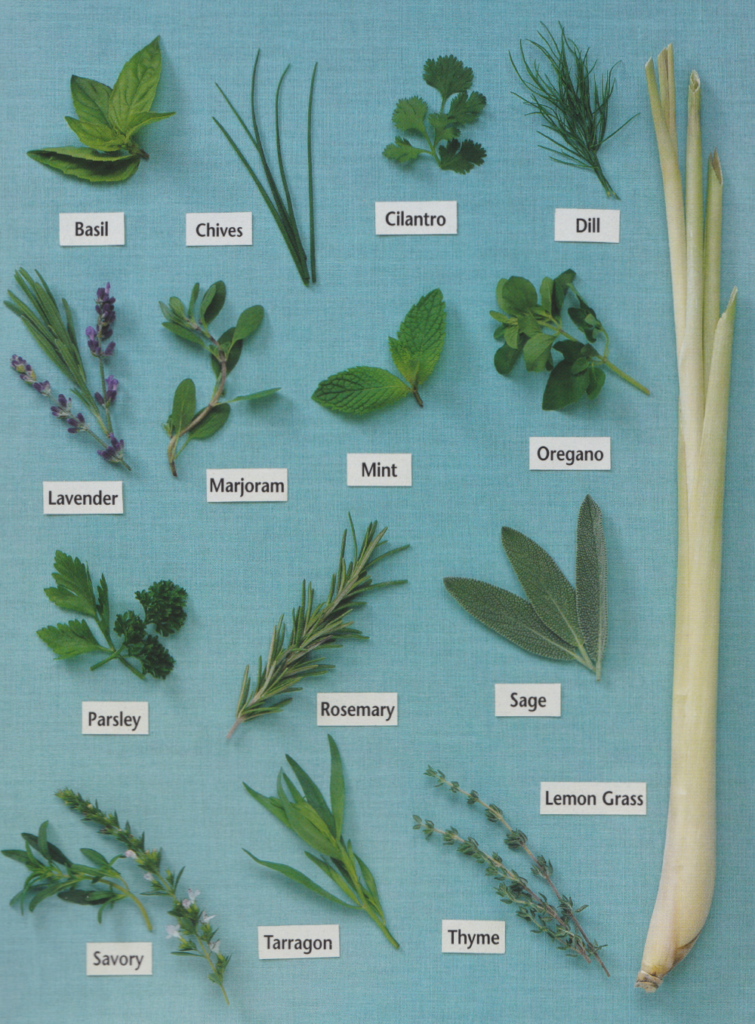 Company's Coming Herbs & Spices - Photo: Stephe Tate - Food styling Patricia Bullock